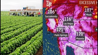 Ready For Higher Grocery Bills? Record Temps CouldDamage Literally Tons of CA Crops. Heat Trips SF Power Grid, Buckles Highways (Videos)