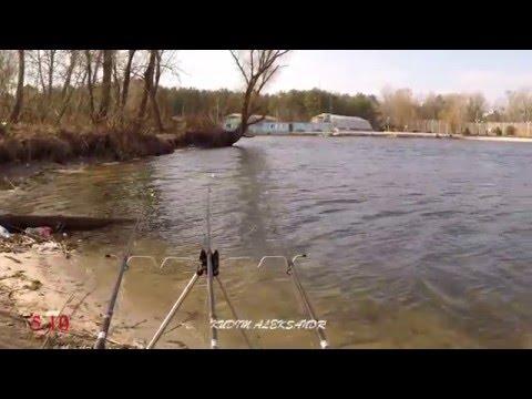 прогноз рыбалки в луцке