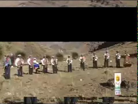ORQUESTA GENETICOS DE HUANCAYO-LOS ZORROS Y LOS CACHORRITOS -HUASICANCHA