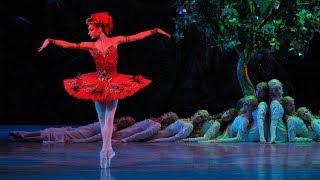 Stravinsky - Ballets Russes - Sacre du printemps - Firebird
