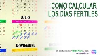 Cómo calcular los días ovulación para quedarse embarazada. Calendario fértil de la mujer.