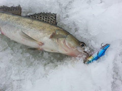 рыбалка на озере брюхово