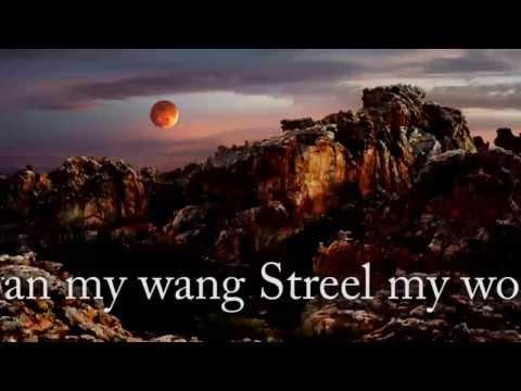 Afrikaanse musiek - plaak - jake the snake live by die boer