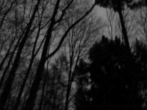 Aaskereia - Im Schattenlicht Zwischen Den Welten
