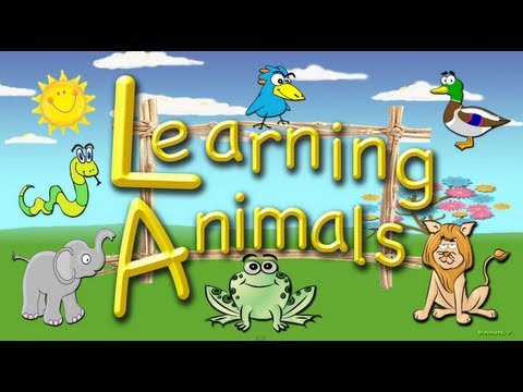 Indentify Animals:  A lesson for Toddlers and Preschool Children