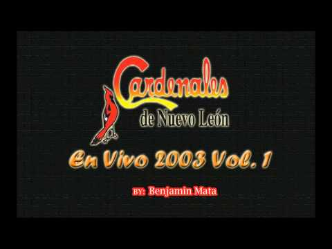 Cardenales de Nuevo León - Vestida De Blanco