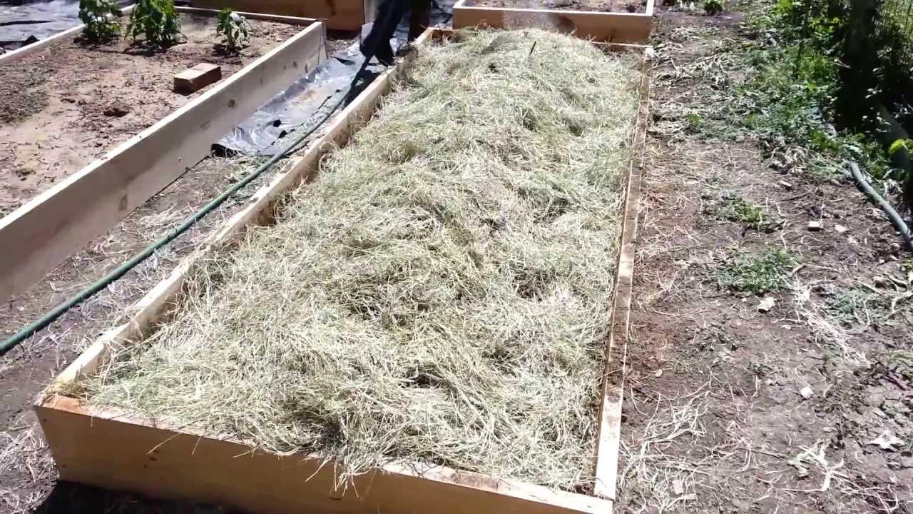 Planting My Raised Bed Garden