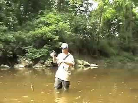Hookset Fishing  -Creek fishing Delaware in July