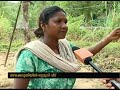 Poor Family lost their shelter in Nadavayal Wayanad
