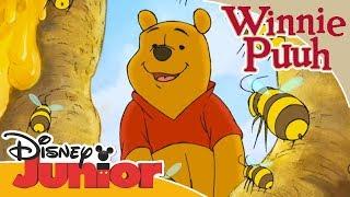 Kleine Abenteuer mit Winnie Puuh - Puuh und die Honigbienen   Disney Junior