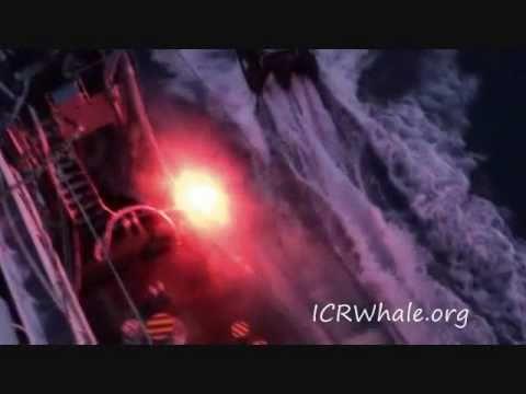 January 9, 2011 Bob Barker Zodiac Attacked Yushin Maru # 2 With Smoke Bombs, Flares, Ropes