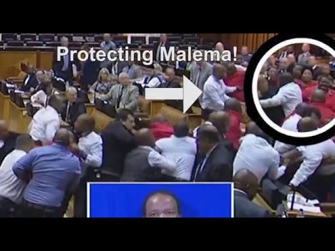 DA's video 'proof' of Malema's 'white shirt bodyguard' in Parliament