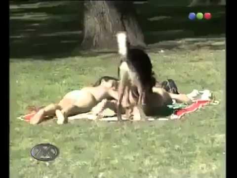 sniffs girls ass Dog