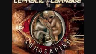 Watch Cephalic Carnage Megacosm Of The Aquaphobics video