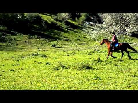 Cross (04/01/2015) Desire Garcia con Club de Equitacion Natural de Guadacorte