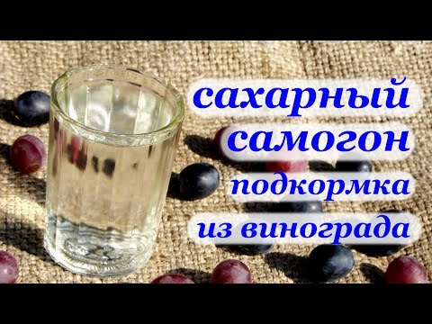 Рецепт самогона из сахара в домашних условиях рецепт
