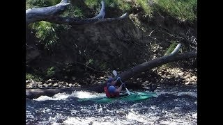 Kayaking The HUON River From JUDBURY to Huonville    10/11/2017