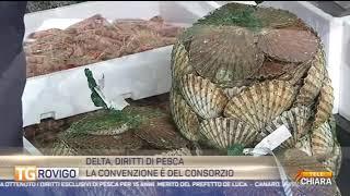 PORTO TOLLE : LA CONVENZIONE E' DEL CONSORZIO
