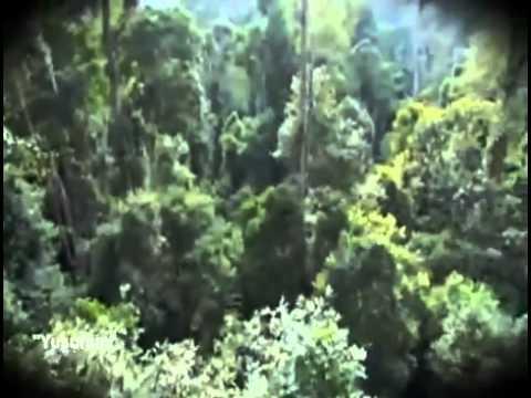 Ağlar Yakub Ağlar, Yusum (aleyhimesselâm) Deyu