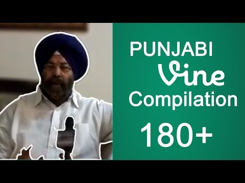 Punjabi Vines Compilation 180+ VINES