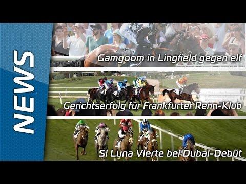 Sport-Welt TV News   05.02.2016   Gamgoom in Lingfield gegen elf