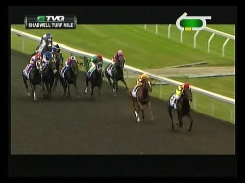 2013 Shadwell Turf Mile Stakes - Silver Max