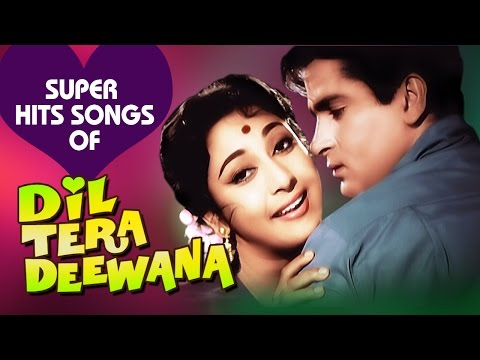 Dil Tera Deewana: All Songs Collection