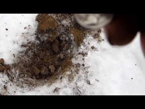 Metal Detecting Northeast Ohio Winter Edition (Wadsworth)
