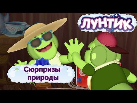 Лунтик и его друзья - Сюрпризы природы. Лето 2016