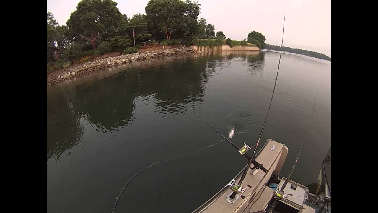Lake norman catfish suspended july 1 2015 part a fishing for Lake norman bass fishing