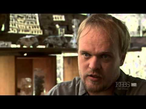 PBS Nature - Silence of the Bees 2007