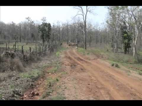 Road & Agriculture of Tribal Korku of Melghat Tiger Project of India
