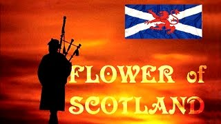 ⚡️FLOWER OF SCOTLAND ⚡️ROYAL SCOTS DRAGOON GUARDS⚡️