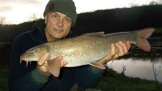 Floodwater Severn barbel. Tips. Bait approach. Why fish flooded rivers.