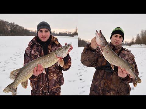 рыбалка во  конце марта получи и распишись жерлицы