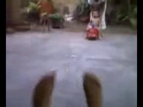 videos de bebes cayendose matias andres