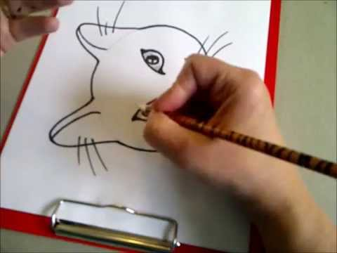 Видео как нарисовать морду кошки