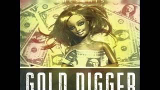 Mario Joy - Gold Digger Z1p3k Radio Edit