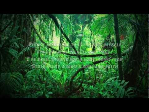 HAROLD KREEDLE: Sympathy For the Devil (Rolling Stones Cover) Lyrics