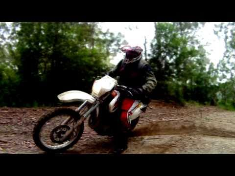 SUZUKI DR650 DIRT ACTION - BUSH PIG THUMPER DR650SE