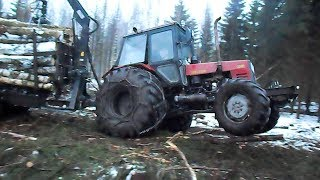 Belarus 1025 forestry tractor with homemade trailer logging in winter forest