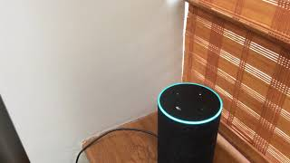 The New Alexa Command.