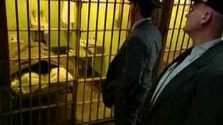 Escape Breakout From Alcatraz