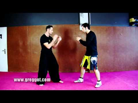 Wing Chun Kung Fu - Technique du jour - Episode 04 Image 1