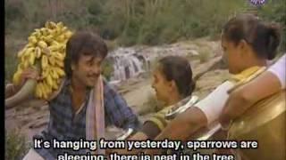 Adi AathuKulla Aathimaram Video Song from Rajadhi Raja