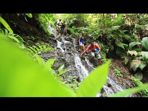 La Martinique, Vivez l'Aventure !