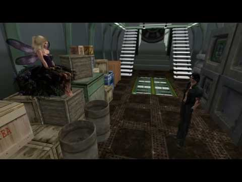 SL11B Community Celebration Video No.5: Businesses at SL11BCC