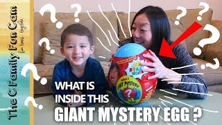 Ryan's World Giant Mystery Egg - What's Inside? | The C Family Fun Cam Toy Unboxing