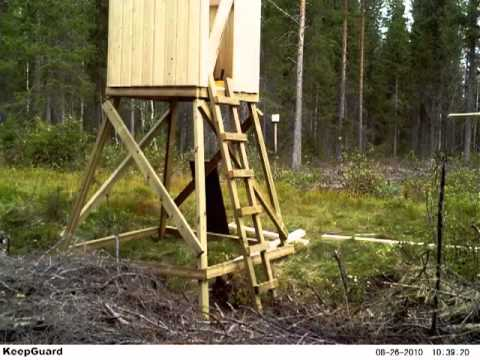 Vilttorn hunting tower youtube for How to build a tower stand
