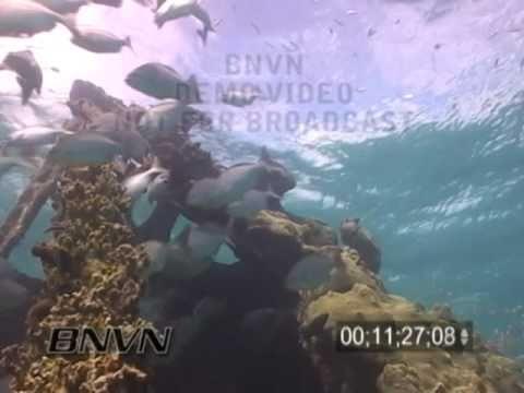 7/02/2004 Dry Tortugas National Park - Windjammer Wreck